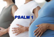 How to use psalms 1